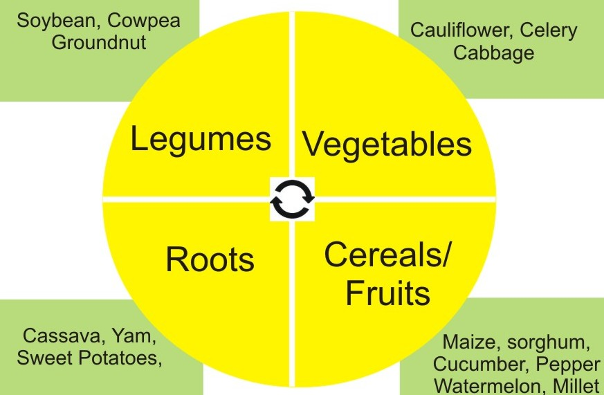 Use The Principles Of Crop Rotation To Control Crop Pests And Diseases