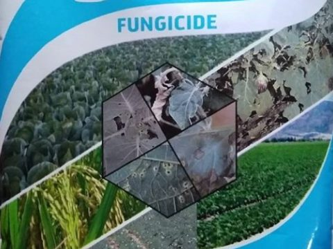 Types Of Fungicides Used In Agriculture