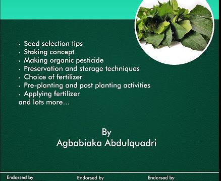 ugu farming pdf