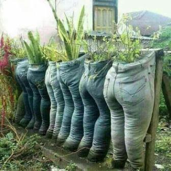 zero waste agriculture