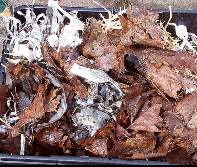 Vericomposting beddings